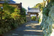 IMG_4577_ji copy
