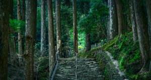 Japan - Wakayama - Nachikatsuura - Nachi Falls