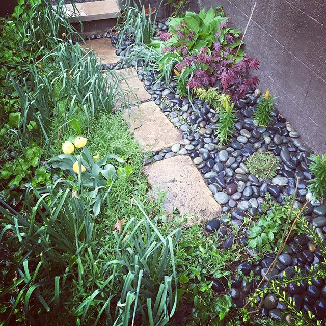 Our new zen garden #flatbushcottage #fbcgarden