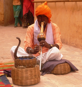 As we were leaving Amber Fort in Jaipur, we got to see this snake charmer charm his cobra!