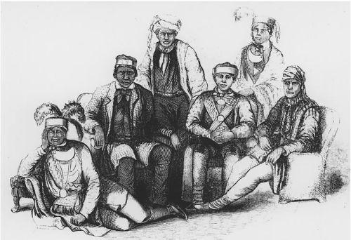 seminoles