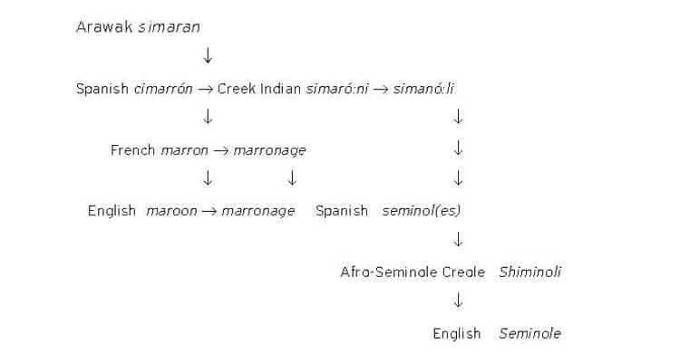 Derivation of the word 'Seminole' diagram