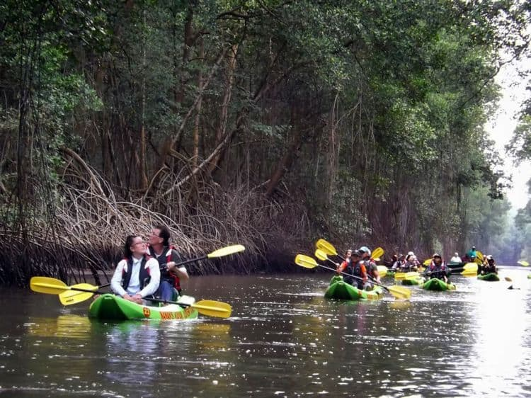 Kayaking inside a mangrove swamp. Caroni Bird Sanctuary. Photo: Ivan Charles