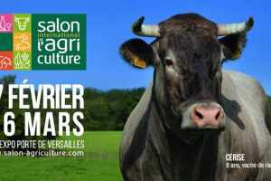 La Reunion Agriculture