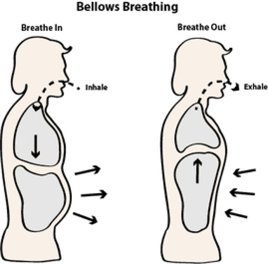 Yoga For Immune System - bhastrika pranayama | bellows breath