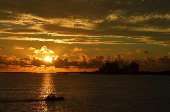 Ausflugstipp: Bahamas – Delfinschwimmen & ein Tag am Strand