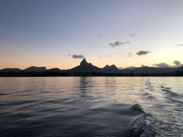 Ausflugstipp: Delfinschwimmen auf Mauritius mit Roman Duda