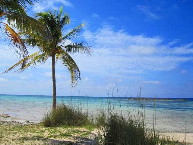 dead-mens-reef-bahamas
