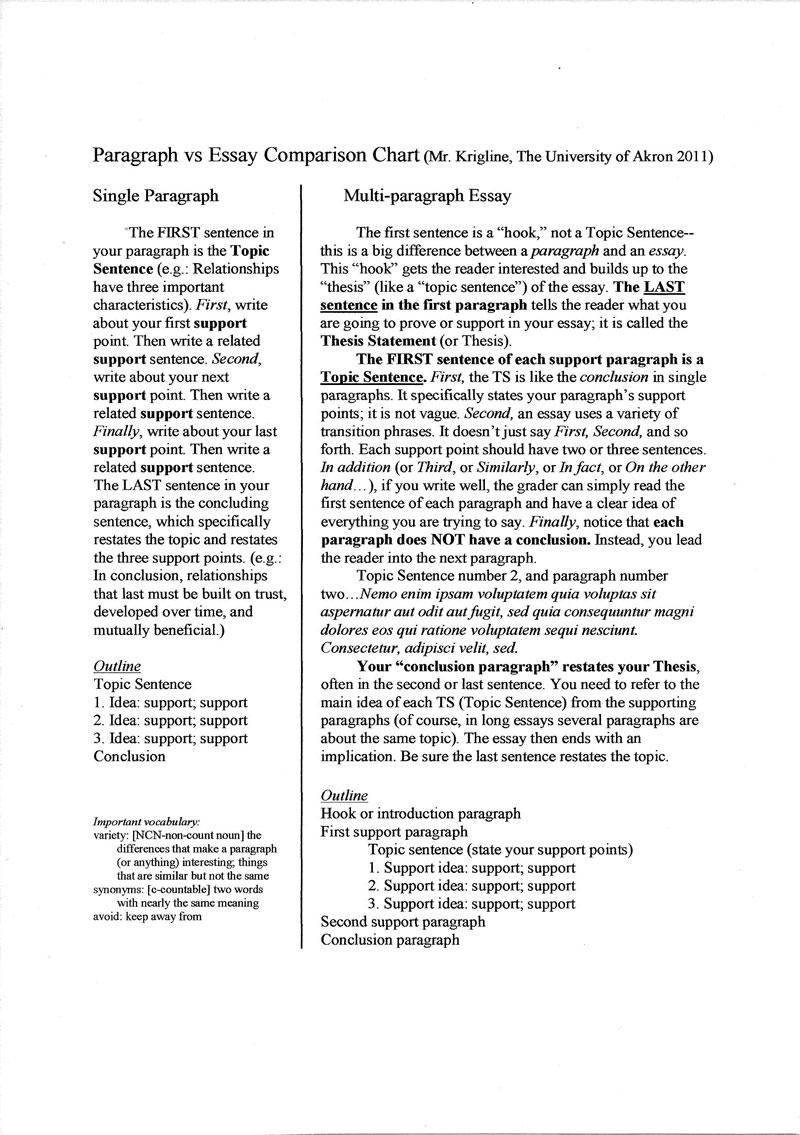 Essays micro marketing plan