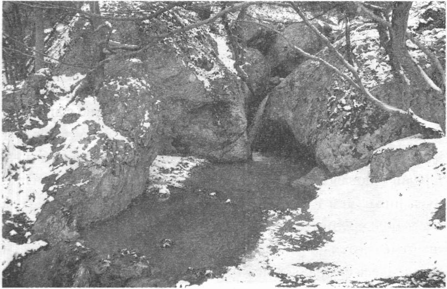 Зимой Ласпинские источники весьма полноводны