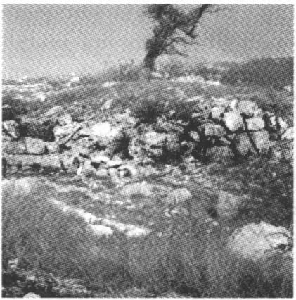 Руины храма Св. Ильи X—XIII вв. на гребне горы Ильяс-Кая