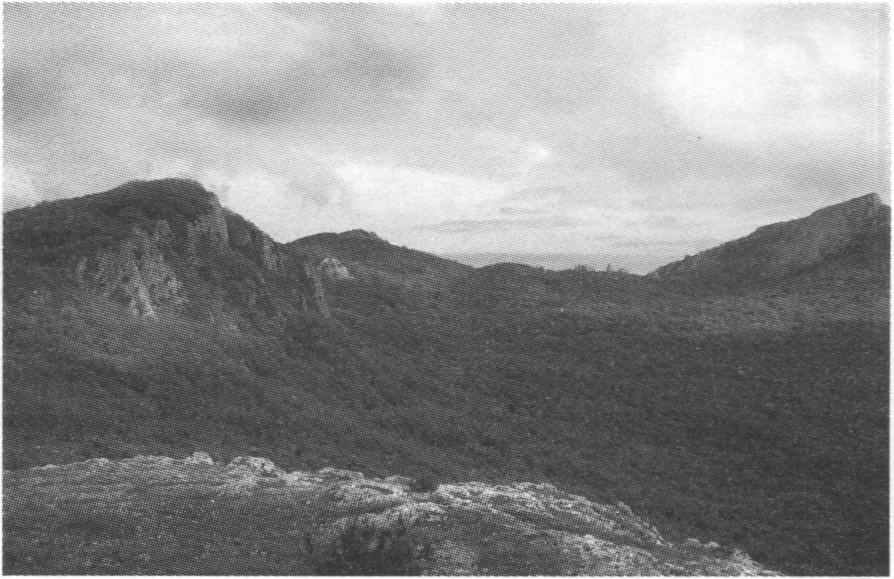 Горная часть ласпинского амфитеатра. Вид с горы Каланых-Кая