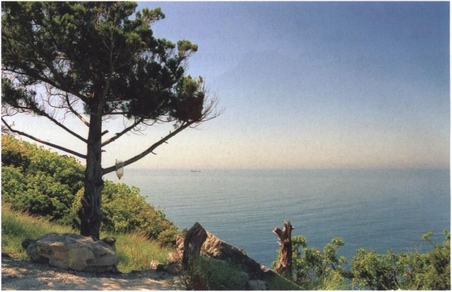 Изумруд. Прибрежный ландшафт. Фото Е. Брянцева