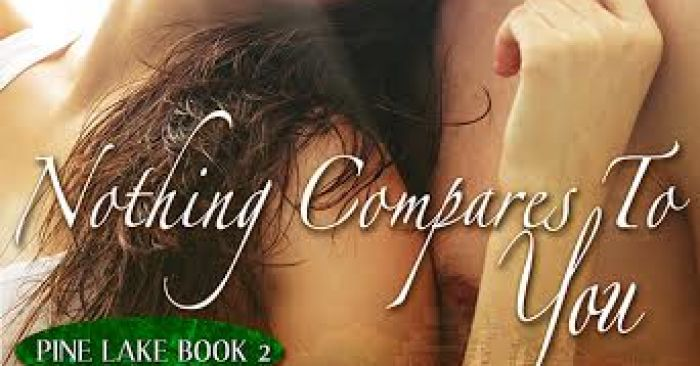 EXCERPT: NOTHING COMPARES TO YOU by Tiffany Marie