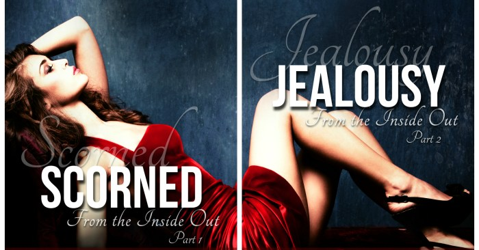 DUAL COVER REVEAL: INSIDE OUT by S.L. Scott