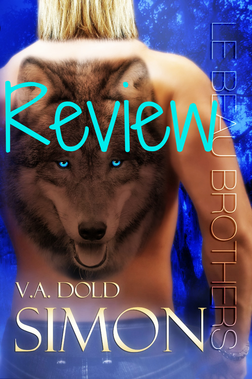 BLOG TOUR REVIEW & GIVEAWAY: SIMON by V.A. Dold