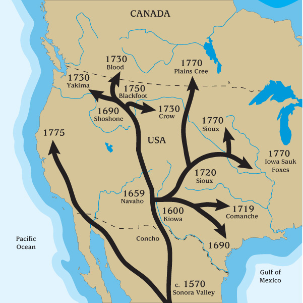 Horses in the  Americas