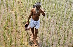 किसानों को उपज का उचित मूल्य दिलाने की महत्वाकांक्षी योजना