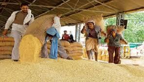 कृषि उपज मण्डियों में हम्माली, तुलाई आदि की नई दरें निर्धारित