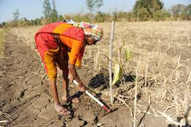 छोटी व मझोली जोत के किसानों के हितों के संरक्षण के लिए पर्याप्त वित्तीय मदद देने की सिफारिश राज्यपालों की उच्च स्तरीय समिति ने राष्ट्रपति रामनाथ कोविंद को सौंपी अपनी रिपोर्ट में की है।