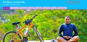 screenshot of the wordpress theme