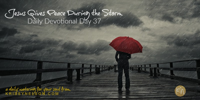 Jesus Gives Peace During the Storm