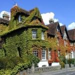 The Cambridge Diaries: School