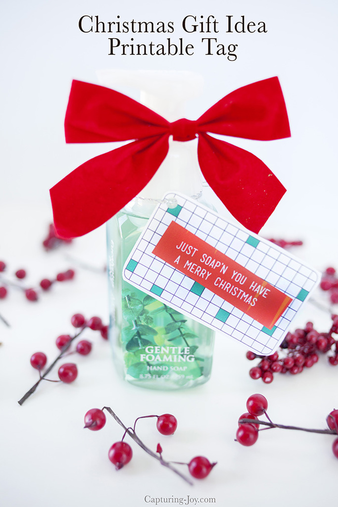 photograph about We Wash You a Merry Christmas Free Printable referred to as No cost Xmas Printable Present Tags - Cleaning soap Present Principle!