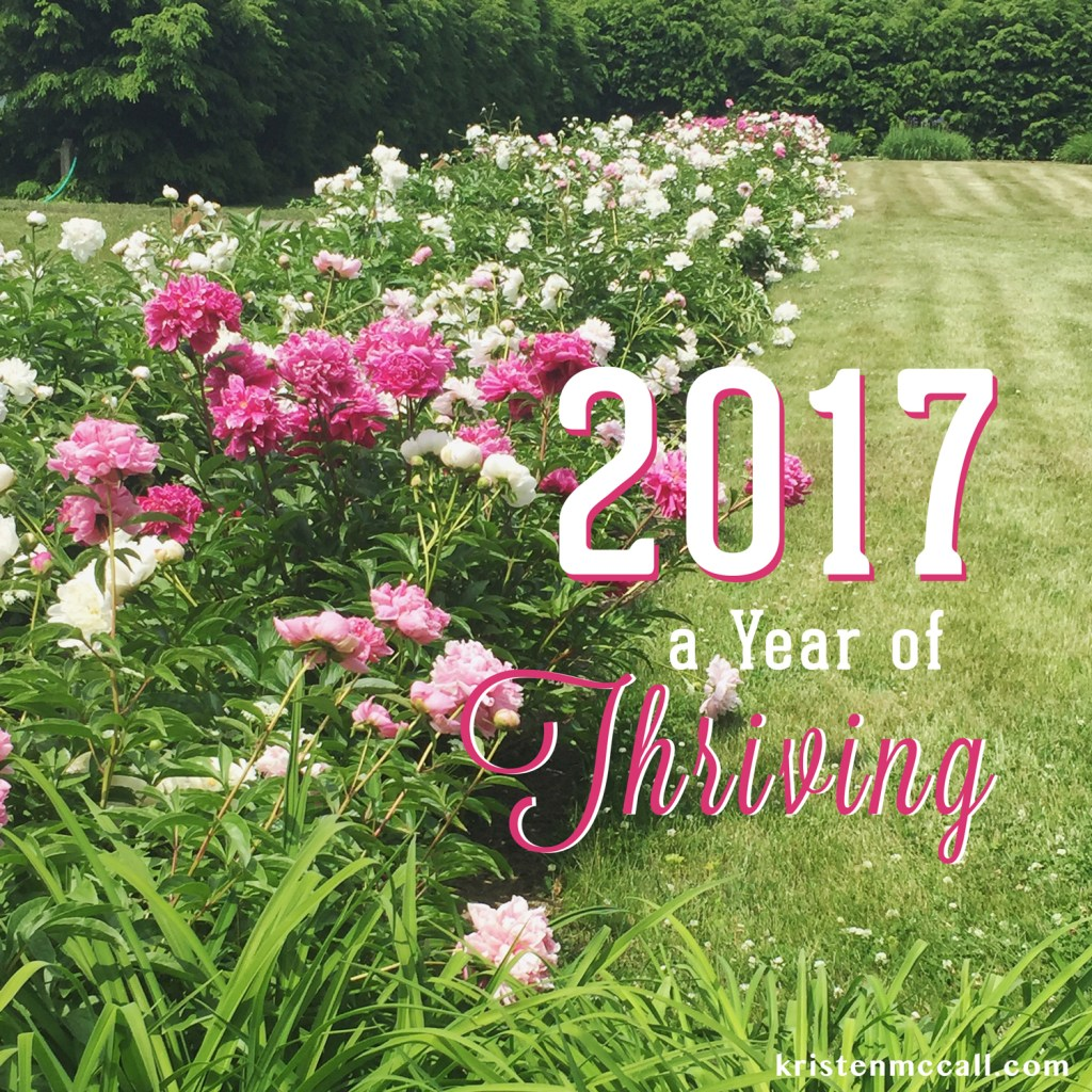 2017-thriving-instead-of-surviving