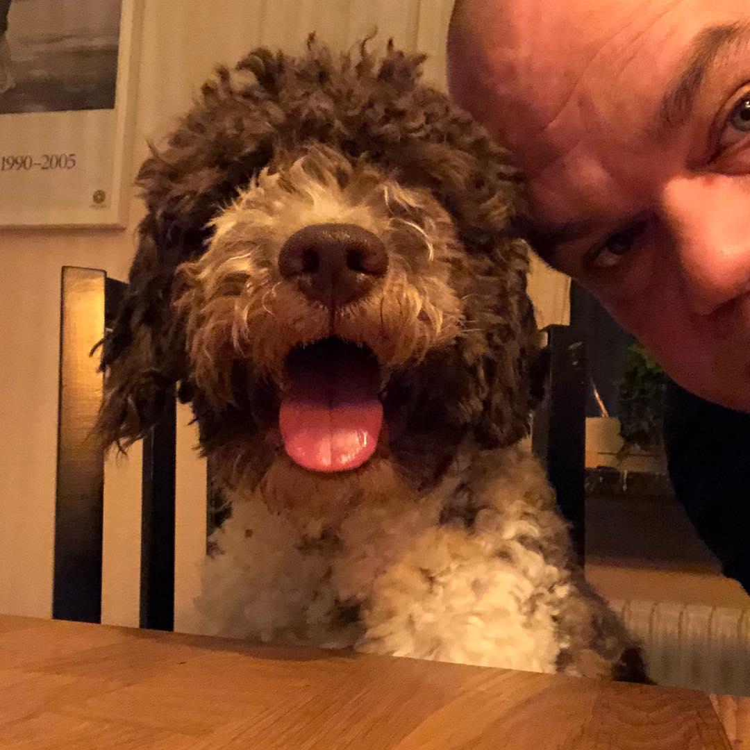 "Took a ""dad-fie"". Did I it great.  #pappajagvillhaenitalienare #maclagotto #lagottoromagnolo #lagottosofinstagram #lagottopuppy #lagottolove #lagottostyle #lagottos #lagottodogs #lagottoromagnolos #lagottoboy #svärdsjö #dalarna #sweden #dog #dogs #dogsofinstagram #dogsofinsta @knappare @mingming_05"