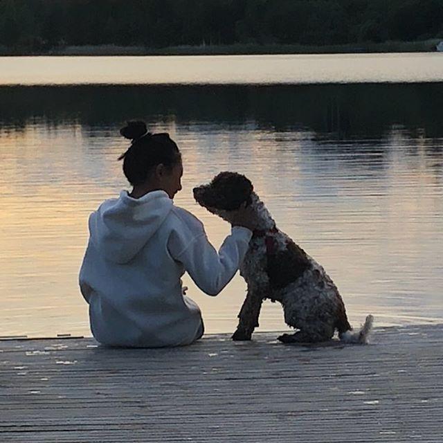 Sunset with my best friend @liminglindblad ❤️#bff #lagottoromagnolo #lagotto #summerdog #pappajagvillhaenitalienare