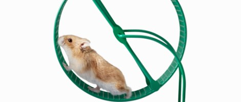 More hamster wheel than spinning plates