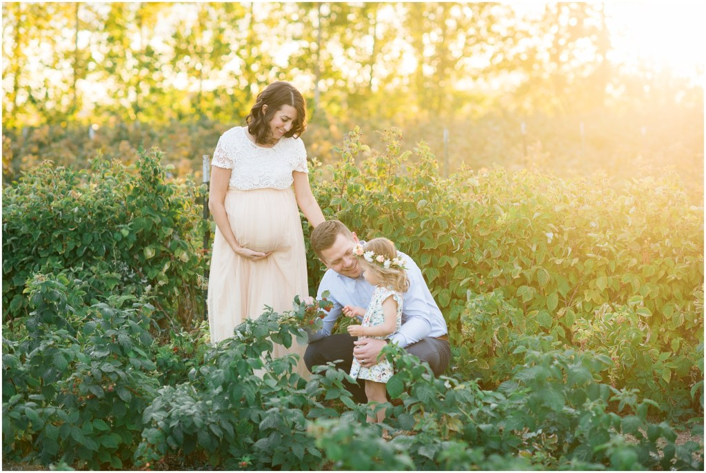Raspberry Patch Family Session | Kristina Curtis Photography