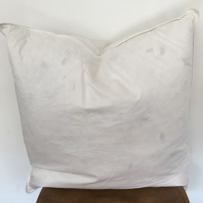 pillow insert (22x22)