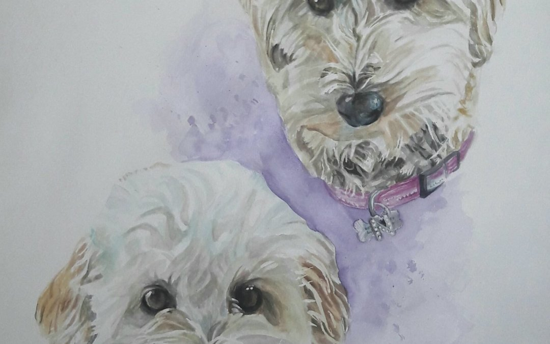 Nellie and Bessie – watercolour on paper