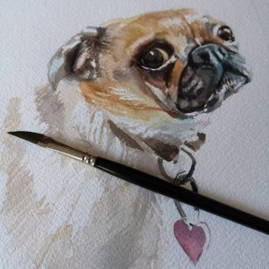 Pug in progress