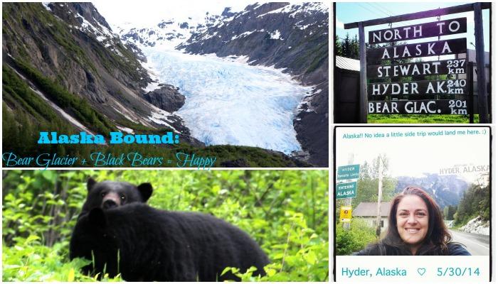 5-31-31 Alaska Bound- Bear Glacier + Black Bears = Happy feature
