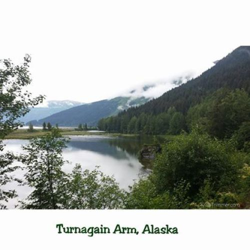 Turnagain Arm - Green