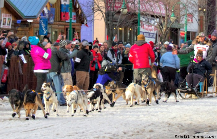 2015 Iditarod Matt Failor