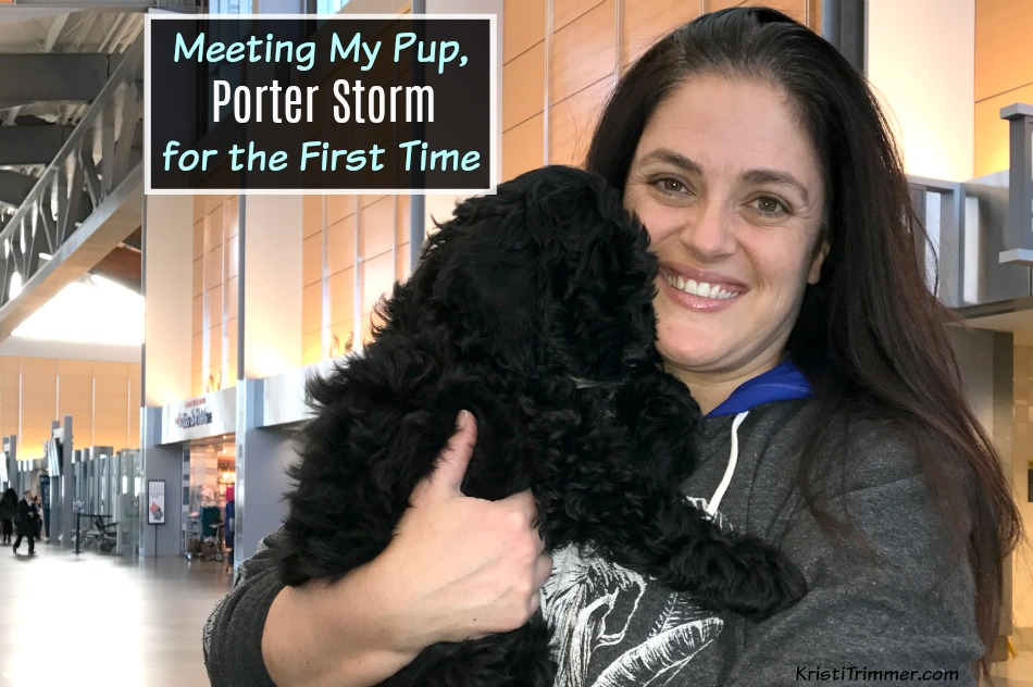 Meeting puppy for first time