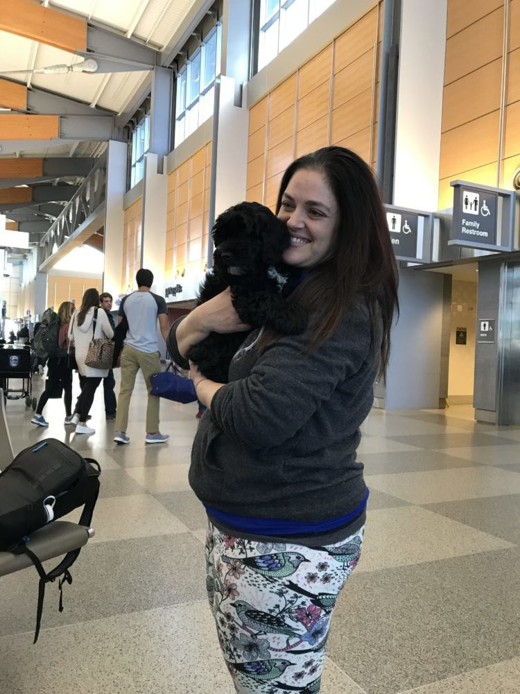 picking up pup at raleigh airport