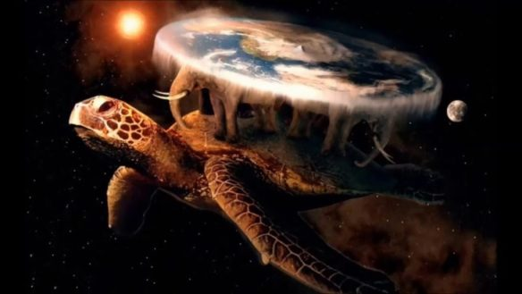turtle earth
