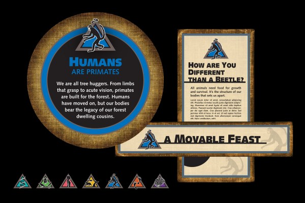 "Krizman Design Cmnh - ""humans Field Guide"" Exhibit Graphics"