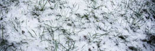 Schnee 2014