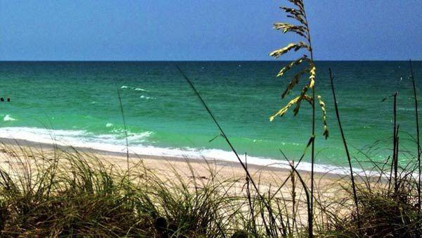 ready-generic-beach-scene-w_185818