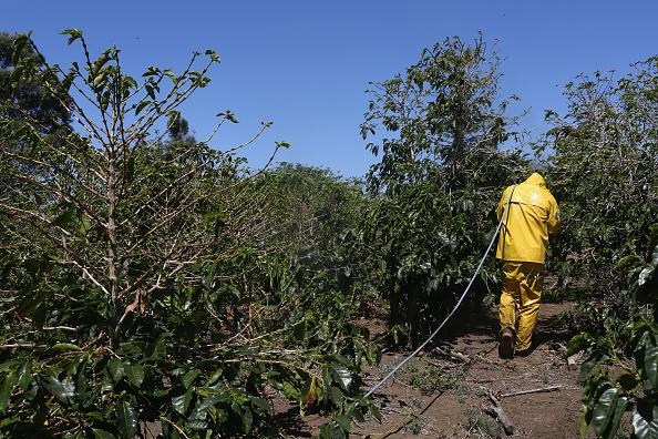 fertilizer farm pesticide