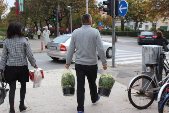 svi-sveti-cvijece-trznica-13
