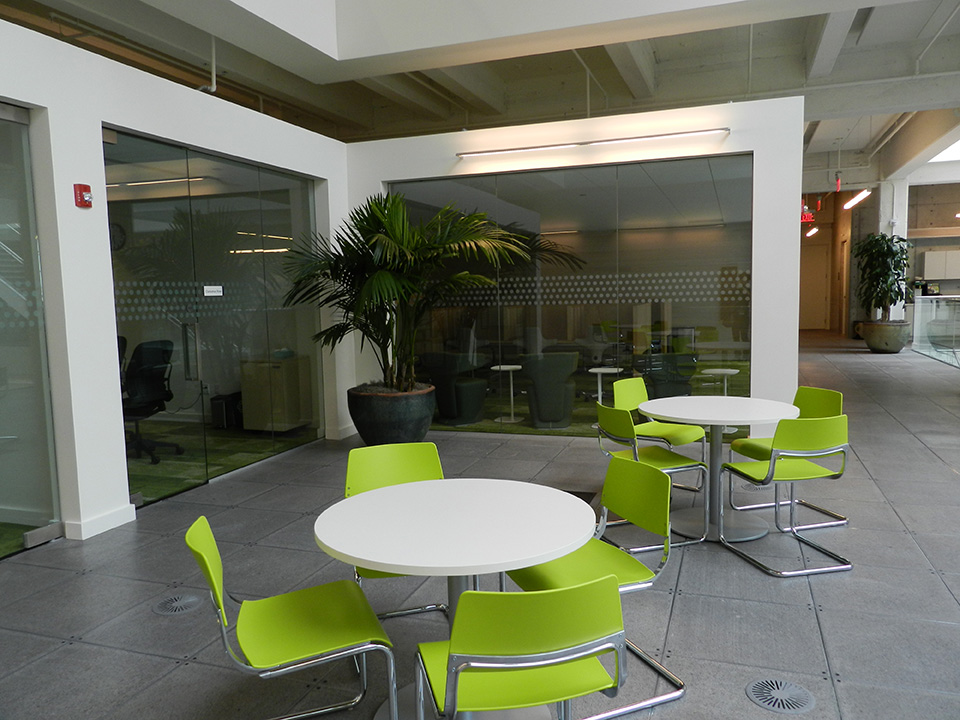 Potted palm leaf in a modern corporate office