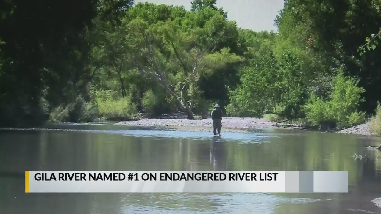 Gila River_1555440988913.jpg.jpg