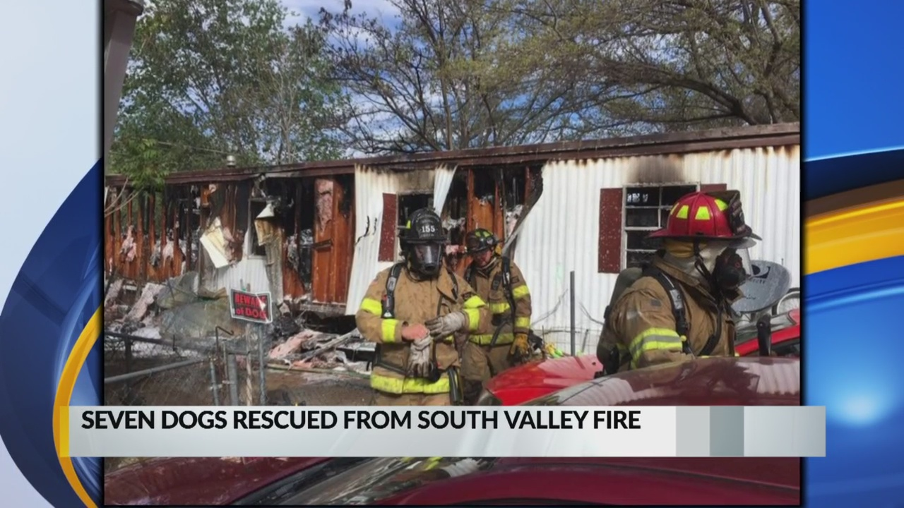 Seven dogs rescued from mobile home fire in the South Valley_1555993545853.jpg.jpg